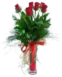 vazo içerisinde 5 kırmızı gül  Ardahan güvenli kaliteli hızlı çiçek