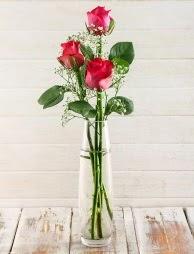 Cam içerisinde 3 kırmızı gül  Ardahan çiçek satışı
