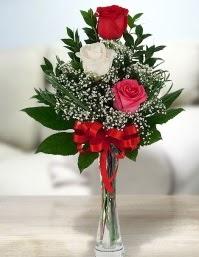 Camda 2 kırmızı 1 beyaz gül  Ardahan ucuz çiçek gönder