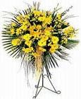 Ardahan yurtiçi ve yurtdışı çiçek siparişi  Sari kazablanka Ferforje