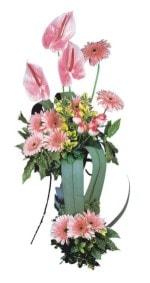 Ardahan güvenli kaliteli hızlı çiçek  Pembe Antoryum Harikalar Rüyasi