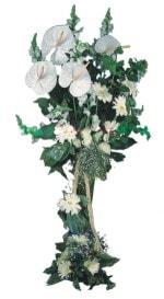 Ardahan çiçek mağazası , çiçekçi adresleri  antoryumlarin büyüsü özel