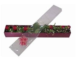 Ardahan anneler günü çiçek yolla   6 adet kirmizi gül kutu içinde