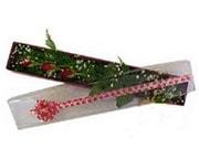 Ardahan hediye çiçek yolla  3 adet gül.kutu yaldizlidir.