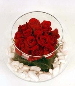 Cam fanusta 11 adet kırmızı gül  Ardahan çiçek gönderme