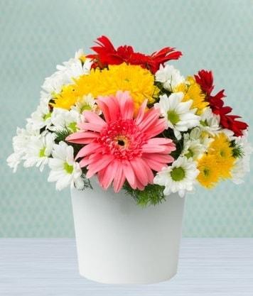 Seramik Vazoda Gelbera ve Papatya  Ardahan çiçek gönderme