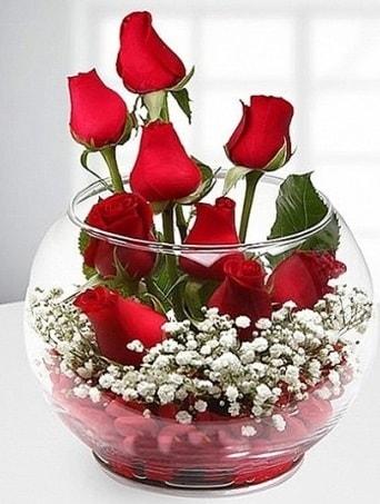 Kırmızı Mutluluk fanusta 9 kırmızı gül  Ardahan çiçek siparişi sitesi