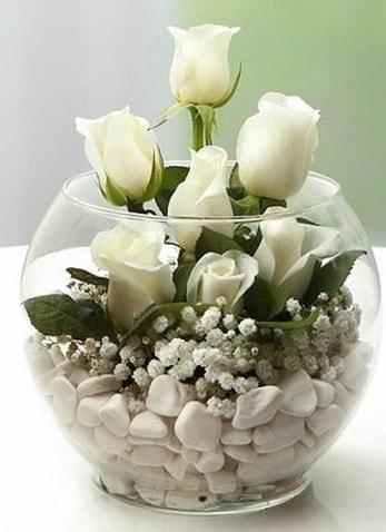 Beyaz Mutluluk 9 beyaz gül fanusta  Ardahan çiçek siparişi sitesi