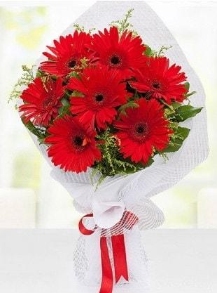Kırmızı Gelbera Buketi  Ardahan internetten çiçek siparişi
