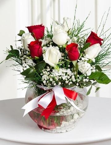 Aşk Küresi  5 beyaz 5 kırmızı gül fanusta  Ardahan internetten çiçek satışı