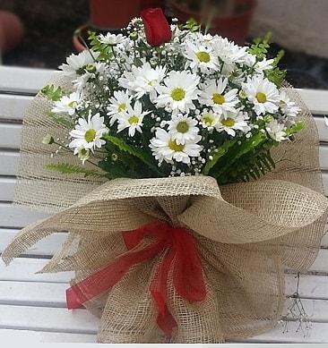 Papatya 1 adet kırmızı gül buketi  Ardahan çiçekçiler