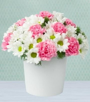 Seramik vazoda papatya ve kır çiçekleri  Ardahan çiçek siparişi sitesi