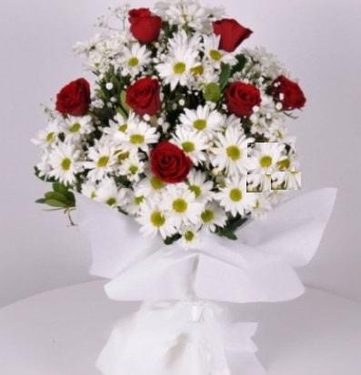 7 adet kırmızı gül ve papatyalar krizantem  Ardahan internetten çiçek satışı