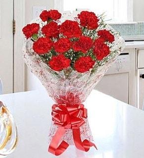 12 adet kırmızı karanfil buketi  Ardahan İnternetten çiçek siparişi