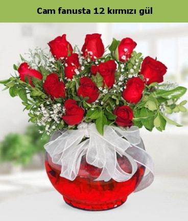 Cam içerisinde 12 adet kırmızı gül  Ardahan internetten çiçek satışı