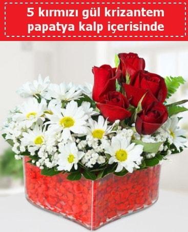 mika kalp içerisinde 5 kırmızı gül papatya  Ardahan çiçek gönderme