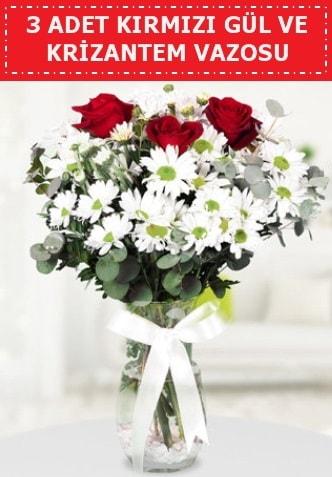 3 kırmızı gül ve camda krizantem çiçekleri  Ardahan çiçek gönderme