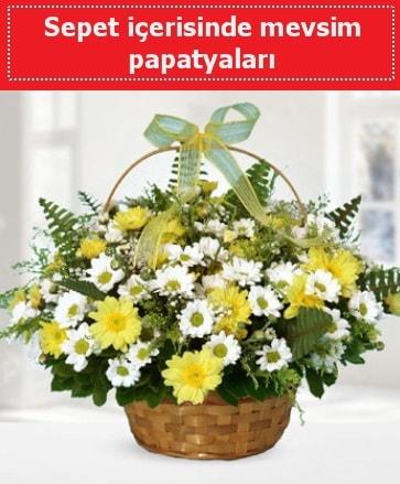 Sepet içerisinde mevsim papatyaları  Ardahan ucuz çiçek gönder